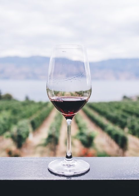 como saber si un vino es vegano